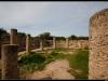 20110318-IMG_1036-Border