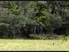 20121231-115907-t-IMG_2002-Border