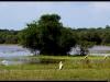 20121231-135232-t-IMG_2043-Border