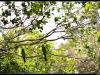 20121231-135534-t-IMG_2046-Border