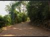 20121102-img_0963-border