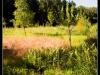 20130719-092533-IMG_3414-twan-Border