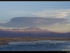 Chaxa lagoon view