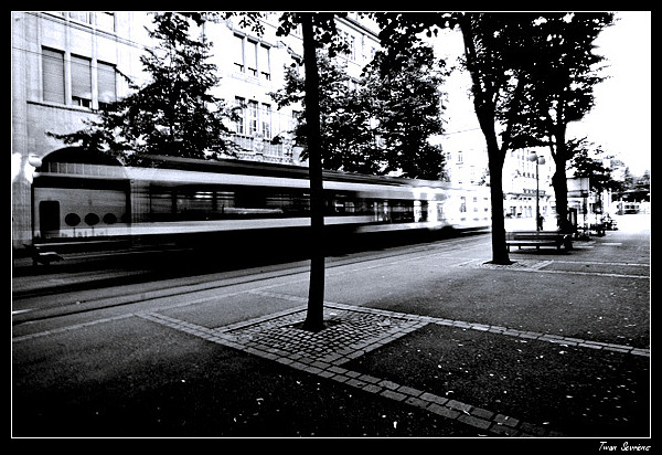 20070623-img_5997-small-border.jpg